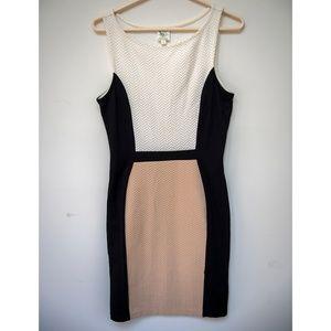Anthropologie color block chevron knit dress sz M